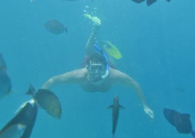 Subbed Royal Island Maldives K